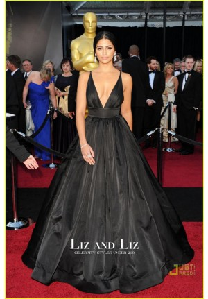 Camila Alves Black Plunging V-neck Prom Oscars 2011 Red Carpet Dress