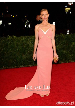 Kate Bosworth Pink Cut-out Prom Gown Met Gala 2014 Red Carpet Dress
