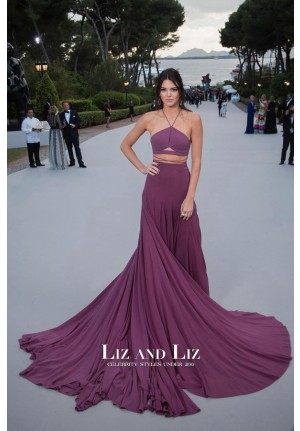 Kendall Jenner Purple Two-piece Dress amfAR Gala Cannes 2015 Red Carpet