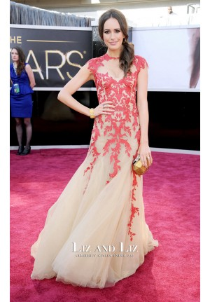 Louise Roe Red Lace Embroidered Celebrity Dress Oscars 2013 Red Carpet