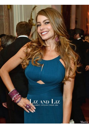 Sofia Vergara Teal-blue Dress 2013 White House Correspondents' Dinner