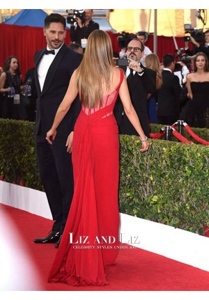 Sofia Vergara Red One-shoulder Chiffon Red Carpet Dress SAG Awards 2015